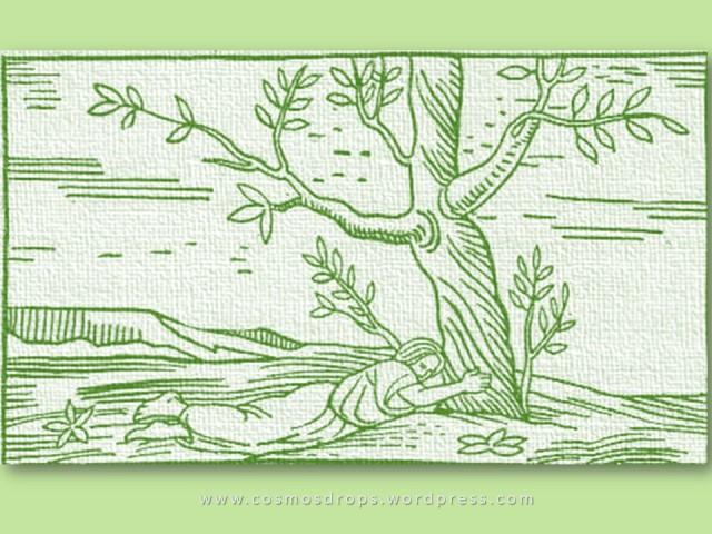 Botânica Arquetípica ilustração antiga